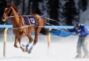 Skijoring comes to St. Paul for Shiverfest