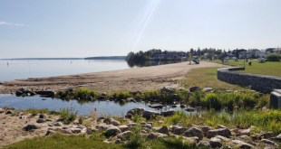 Cold Lake to consider allowing alcohol consumption in select parks