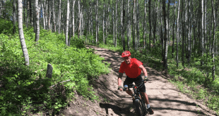 Beginner trails added to Cold Lake Bike Park