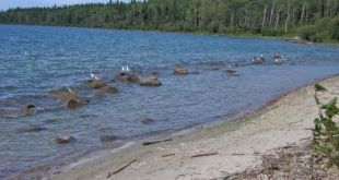 Cold Lake woman drowns at Cold River