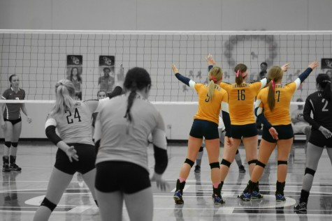 The Lakeland Mirror : Womens Volleyball