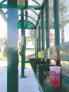 There were no riders at bus stops on Monday. Although Pasco County was technically open on Columbus Day, many departments — including Pasco County Public Transportation — were closed for employee training. (Michael Hinman/Staff Photo)