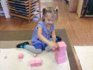 Ella Selover works on a botanical puzzle at Garden Montessori, a private, preschool. The school's board had hoped to open a public charter school, with free tuition, for kindergarten through sixth grade in 2015. Those plans are now on hold after leasing negotiations fell through. (File Photo)