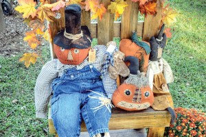 Pumpkins and scarecrows go together at the annual Scarecrow Festival at the Florida Pioneer Museum. (Richard Riley/Photo)