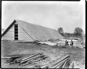 Sunnybrook Tobacco barn number 3 in Dade City, destroyed by the Hurricane of 1921. (Photo from the Burgert Brothers Photography Collection, November 2, 1921)