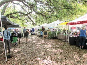The seventh annual EcoFest, like the one last year, will be presented at Tampa's Lowry Park. The moss-draped oaks provide a lovely backdrop to the event that aims to promote earth-friendly living