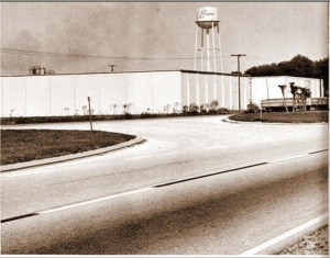 This is where Evans Packing Plant stood in February 1989. (Courtesy of Pam Higgins/The History Center/Pioneer Florida Museum and Village Collection)