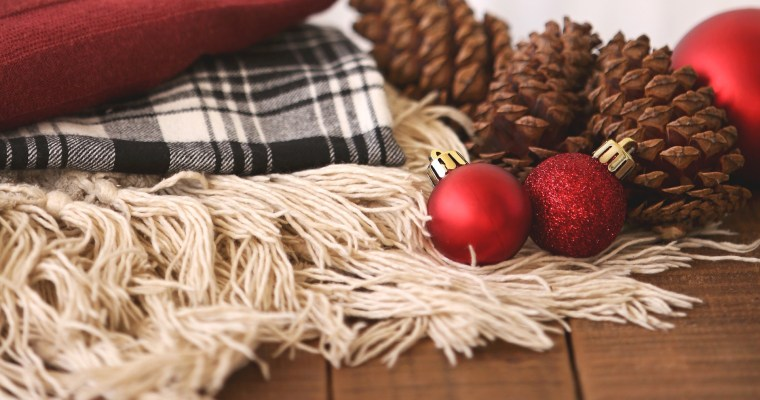Happy Holidays From Columbus: Local Bloggers Share Ideas for Holiday Fun!