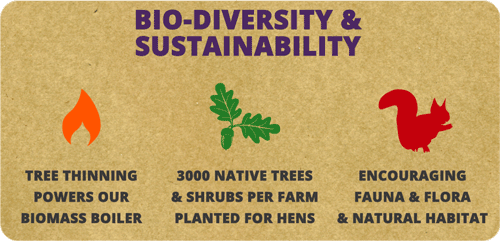 Biodiversity and Sustainability
