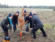 Planting the 3 millionth tree