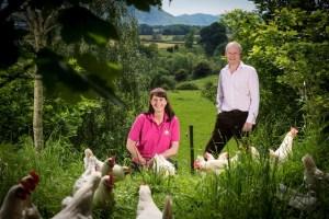 David and Helen Brass