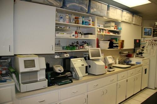 Lakeside-Animal-Hospital-laboratory