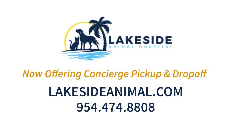 lakeside video