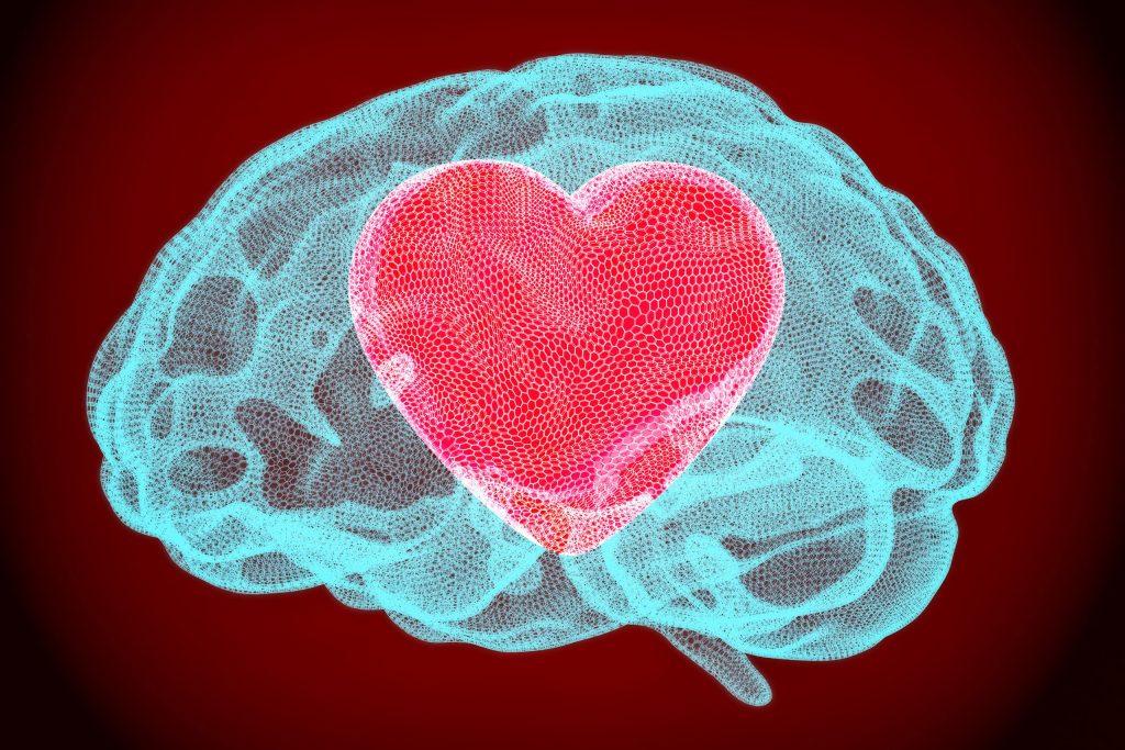 Heart inside brain 3D rendering