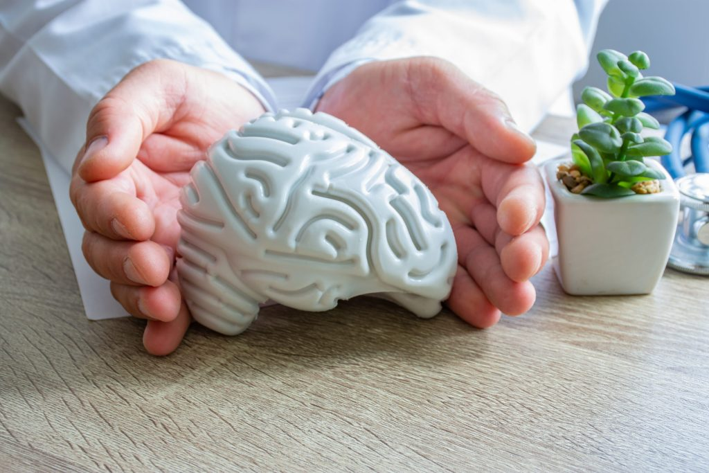 Doctor hands surrounded figure of human brain shape