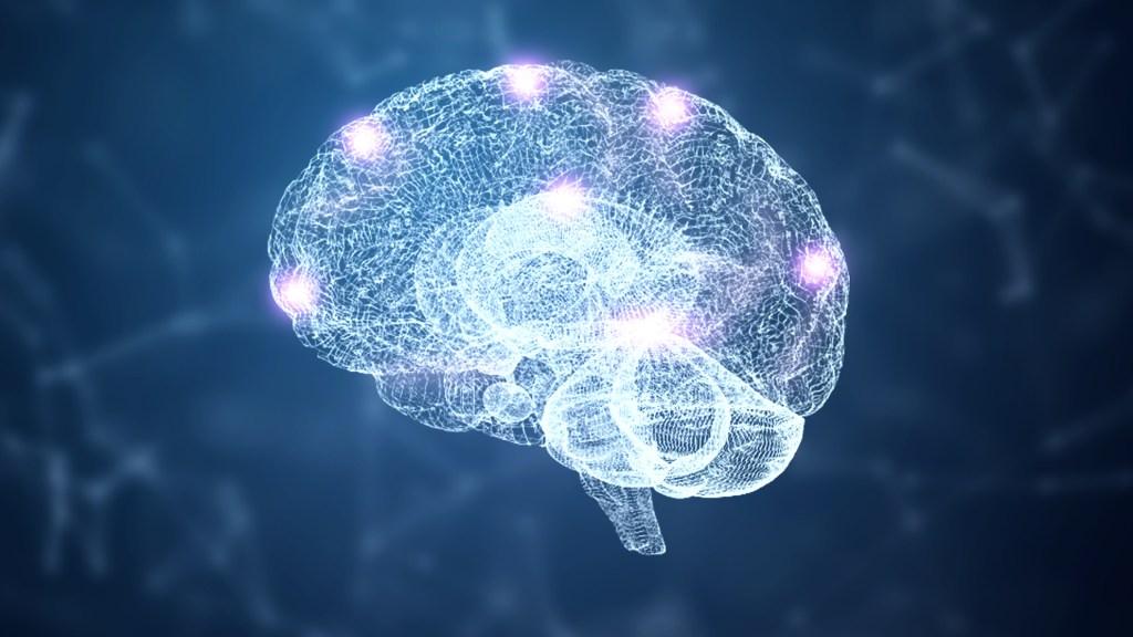 brain and nervous system wireframe hologram simulation node with lighting on blue background.