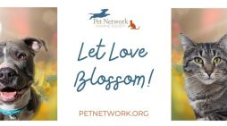 Pet Network Humane Society Announces New Executive Director