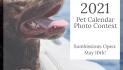 The Pet Network 2021 Pet Calendar Photo Contest
