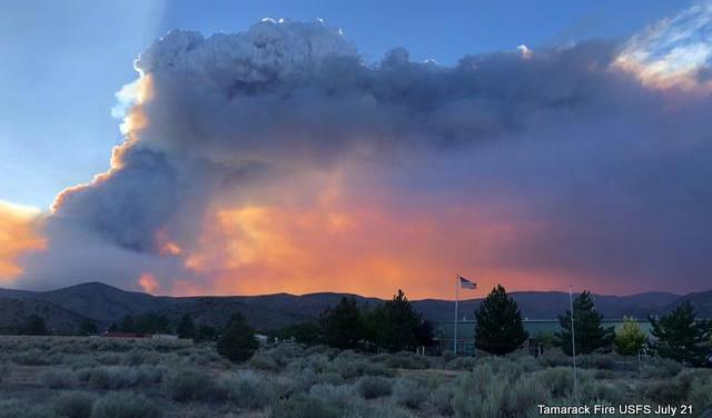 Tamarack Fire July 21 Evening Update.  43,900 Acres, 1,213 Souls Fighting the Fire