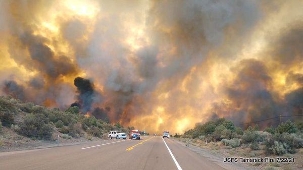 2,500 Acre Tamarack Spot Fire on East of Hwy 395 Near Holbrook Junction