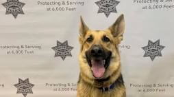 Truckee Police Dept Had a Visit from Thor Last Week