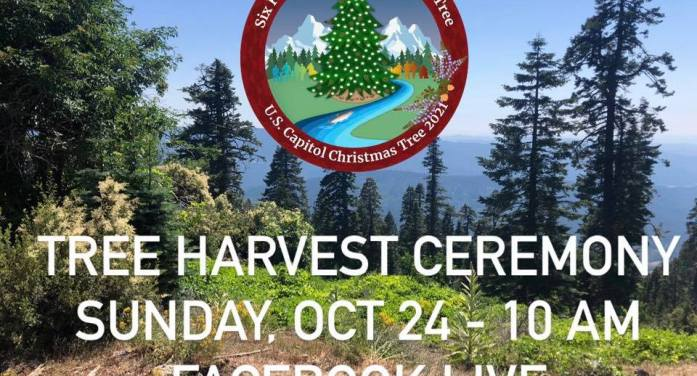 2021 U.S. Capitol Christmas Tree to be Harvested in California on Oct. 24