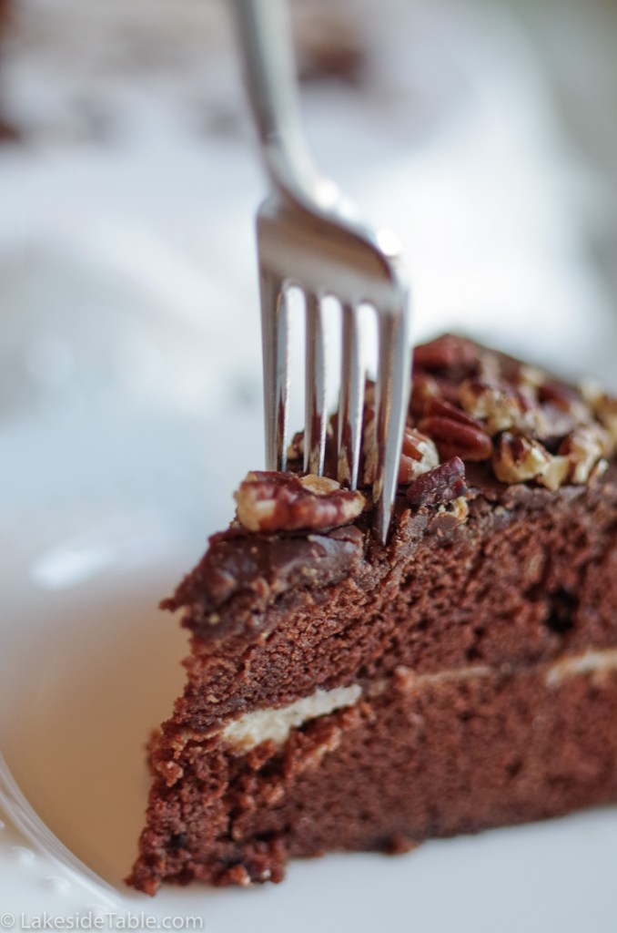 a 2 layer piece of chocolate cake in front of the whole cake on white plates
