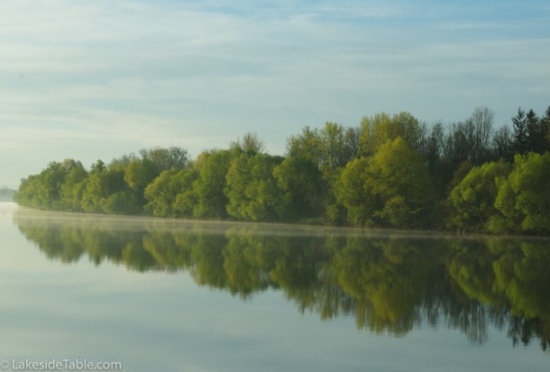 Danube River with trees and their reflection with blue sky and wispy clouds.