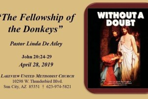 The Fellowship of the Donkeys