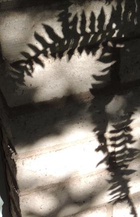 shadow-10