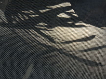 sunshadow prints against the screen