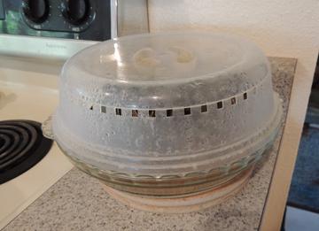 microwaved artichoke