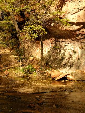shadow rock reflections