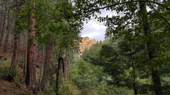 West Fork Trail, Oak Creek, Sedona, Arizona