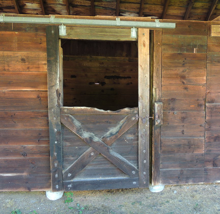 picture of horse chewed stable door