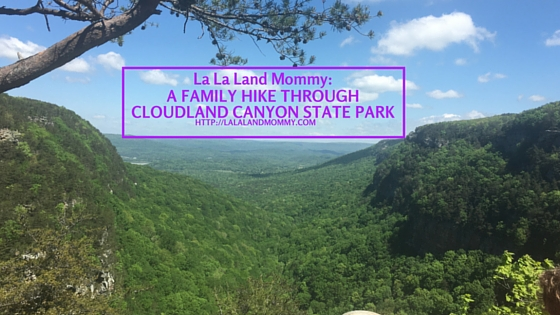 A Family Hike Through Cloudland Canyon State Park