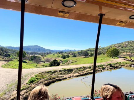 Tram Ride at the Safari Park
