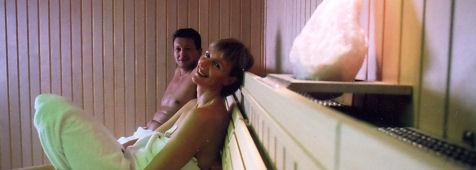 intro-sauna