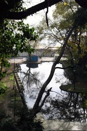 Reflejo de agua Varna