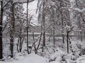 Mucha nieve Triavna