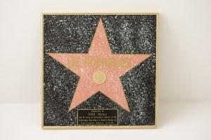 Walk of Fame Award