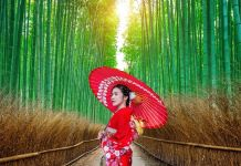 japan traditional dress lady with umbrella