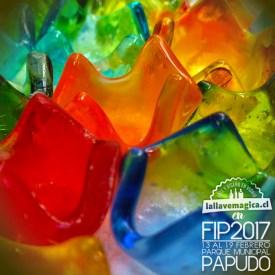 Colores de verano FIP Papudo 2017