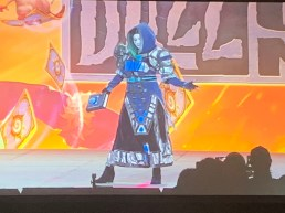 blizzcon-2018-cosplay-53