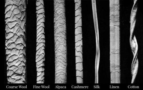 A comparison of natural fibres under a microscope