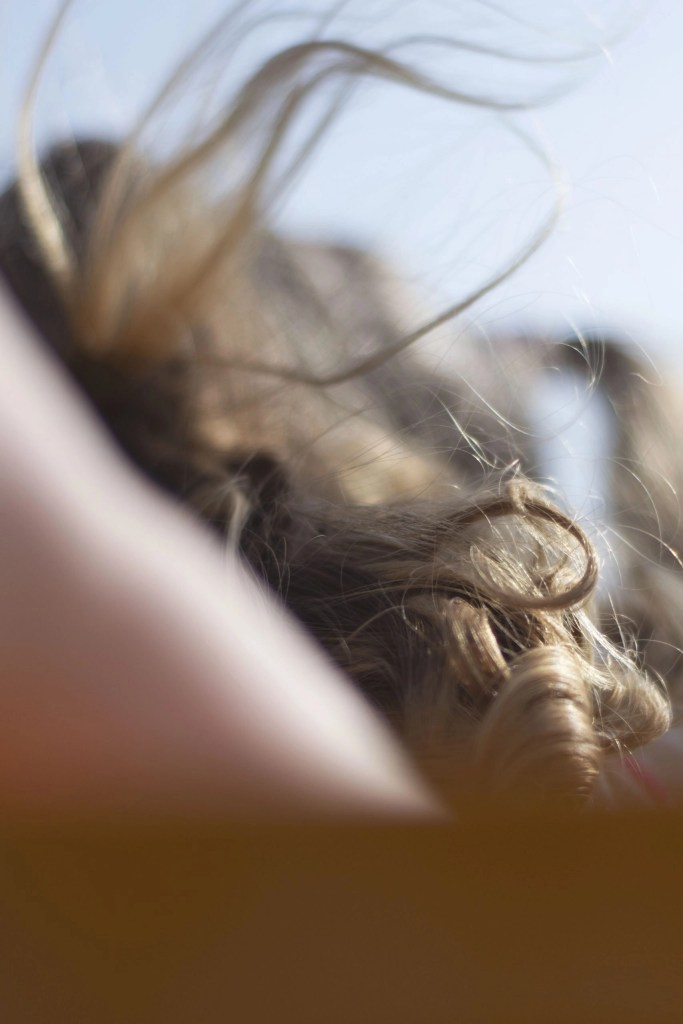 hair in the wind