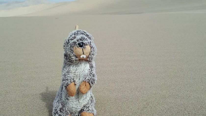 ( PÉROU Jour 2 – Suite ) Pisco, haricots, buggy dans le désert d'Ica et géoglyphes de Nazca.