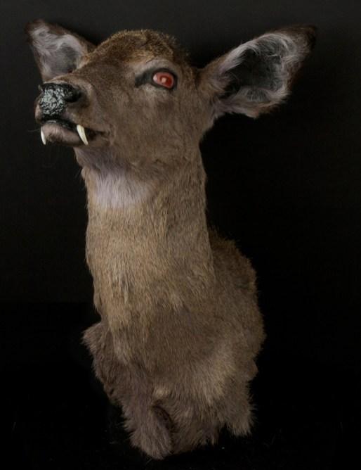 Katie Innamorato - Mutant Deer