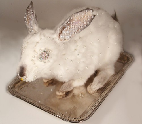 Naturally deceased rabbit, urethane foam, pearls, Swarovski crystals, epoxy, vintage metal tray (rabbit can be removed from tray and stand alone if desired) 6 x 5 x 9 in. $550.00