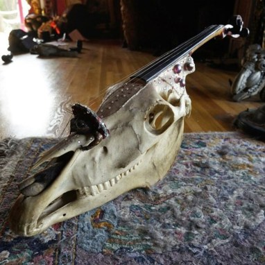 Composite sculpted piece consist of a violin built from horse skull, taxidermy frog as the bridge, music box installed inside the skull, which is operated by a key on the side of the jaw. $2,500.00